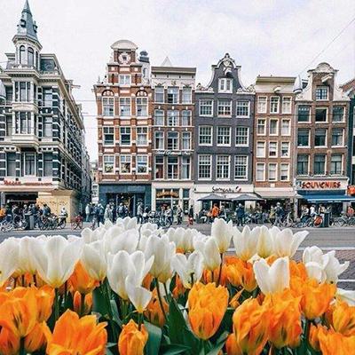 фото Автобусный тур в Амстердам Голландия из Львова Гелена тур