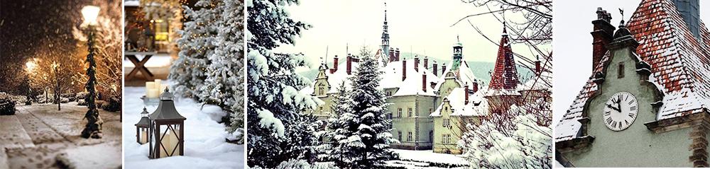 фото Замок Шенборна экскурсия Карпаты из Харькова на новый год 2019